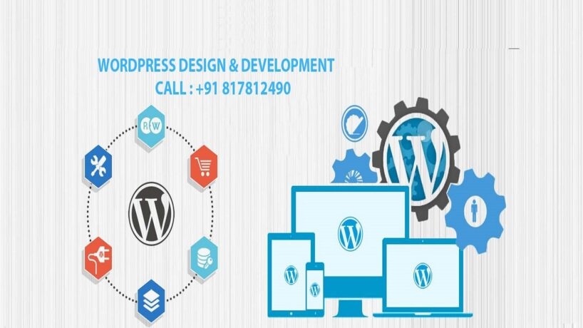 freelance web developer in india